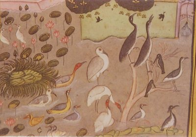 Birds in Mogul Period Art