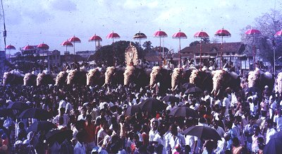 Pooram Festival Celebrations, Kerala
