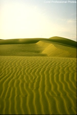 Picturesue Sand Dunes, Rajasthan