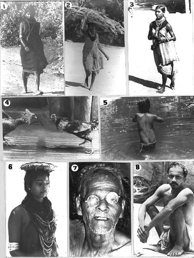 Pictures of Halakki Tribe