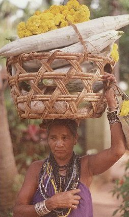 Halakki Tribal Woman Going to Marketplace