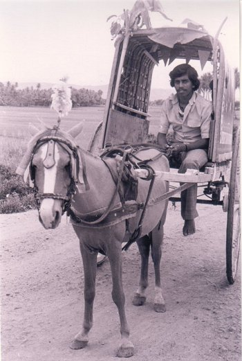 Picture of a Tonga and Driver