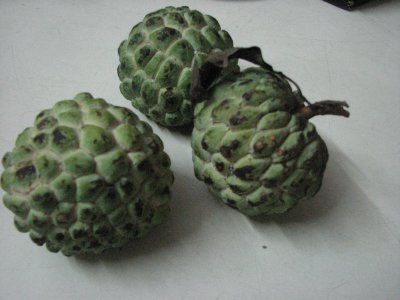 The Seetaphal Fruit