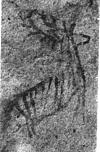 A pre-historic rock painting of a deer, Bhimbetka in Central India
