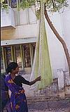 The Saree as Cradle