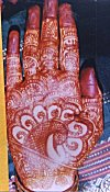 The Mehendi (henna) on a Bride
