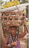 A Halakki woman going to market to sell vegetables