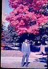 An Indian friend of Kamat, under a full bloomed tree