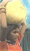 Even with a full head-load, a tribal girl can walk 30-40 kilometers in a day