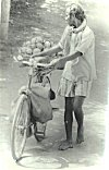 Coconut Hawker