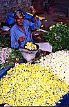 Man Selling Flowers by Weight