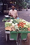 Traveling Vegetable Vendor
