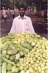 He is a fruits and vegetable seller.
