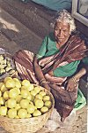 I have to sell fruits to make a living.