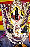 An Idol of Ganesh Overwhelmingly Decorated With Flowers on his Birthday