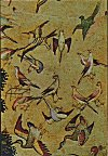 Birds from a Moghul Miniature Painting