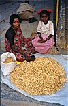 Peanut Vendor