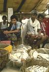 Fishermen at the Market, Cochin