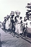 Tribal Women on their Way to Market