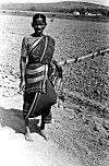 A Village Woman on Way to Marketplace