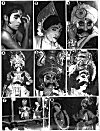Pictures of Yakshagana Artists