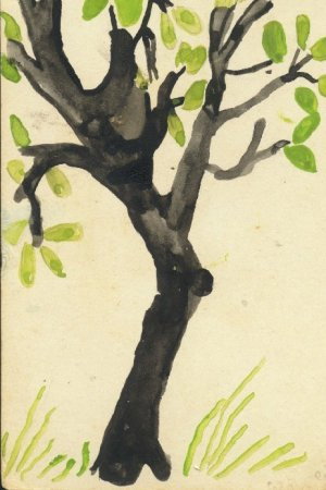 """Chiguru"" -- The Spring"