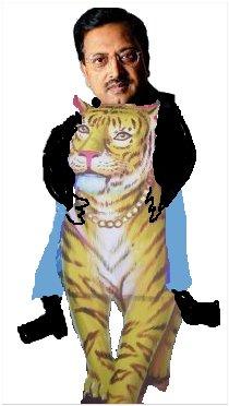 Tiger Riding